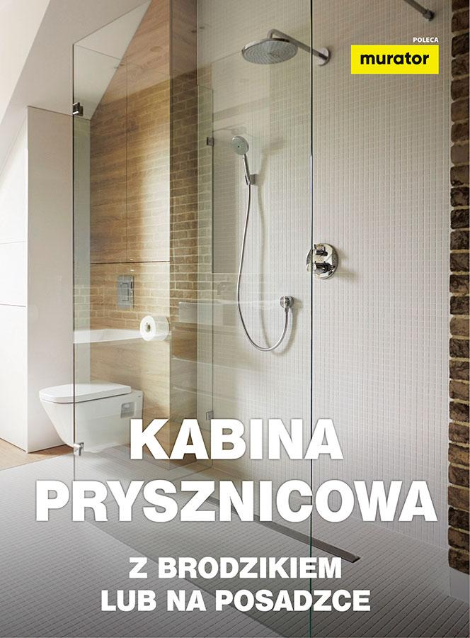 Kabina prysznicowa - z brodzikiem lub na posadzce