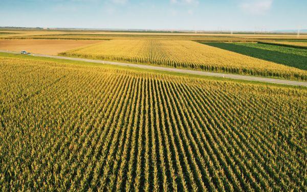 Ziemia rolna nie tylko dla rolników. Złagodzono ustawę o obrocie ziemią rolną