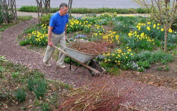 Kwiecień w ogrodzie: jakie prace należy wykonać w kwietniu w ogrodzie