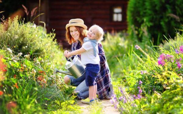Lipiec w ogrodzie: prace pielęgnacyjne w ogrodzie w lipcu